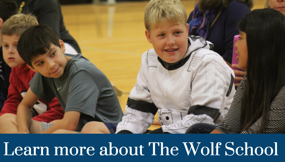 Learn more about The Wolf School
