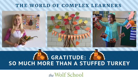The World of Complex Learners: Gratitude